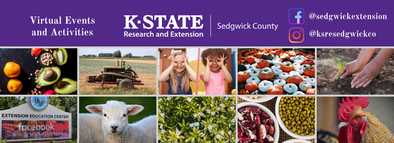 K-State Research and Extension — Sedgwick County is offering virtual events and activities.