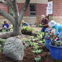 Master Gardeners prepare and plant a landscape bed with plants recommended for south central Kansas