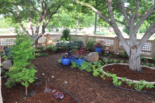 Free Spring Gardening Classes Provided At Wichita Public Library